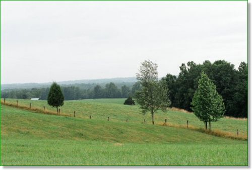 7.46 Acres Of Kentucky Bluegrass : Liberty : Casey County : Kentucky