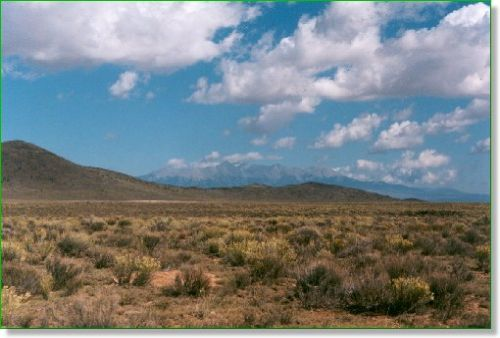 Colorado Ranch Land 80 Ac. W/ Views : San Acacio : Alamosa County : Colorado