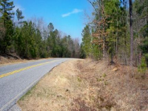 365 Acres Forest & Hunting : Lizella : Crawford County : Georgia