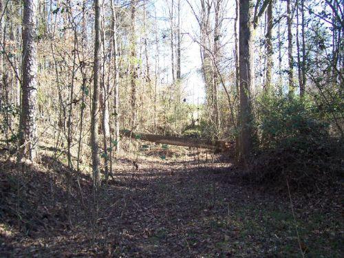 Residential / Recreational Land : Alto : Banks County : Georgia