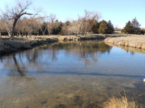 102 Acres On The North Fork : Arlington : Reno County : Kansas