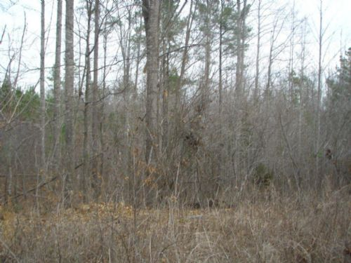 Pleasant Grove Hideaway - 18.20 Ac. : Keysville : Lunenburg County : Virginia