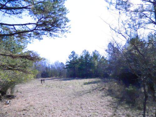 101 Acre Hunting & Recreation : Stephens : Oglethorpe County : Georgia
