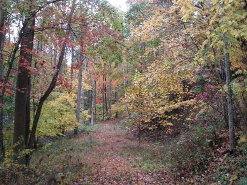 Acreage Very Close To Jnf : Independence : Grayson County : Virginia