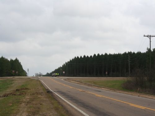295 Acre Development Property : Forest : Scott County : Mississippi