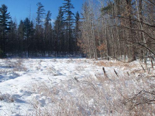 150523-lot 19 Patrice Pines Ln : Minocqua : Oneida County : Wisconsin