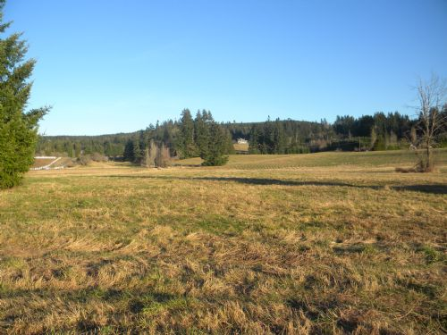 Pasture And Homesite : Rochester : Thurston County : Washington