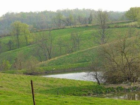 150 Acres, Highway 227, Wheatley : Owenton : Owen County : Kentucky