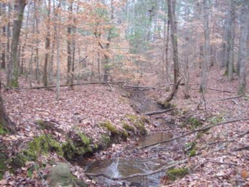 160+/- Ac Near Goodwater : Goodwater : Coosa County : Alabama