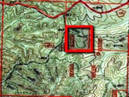 Ac259-30+/- Acres, Talladega, Al : Talladega County : Alabama