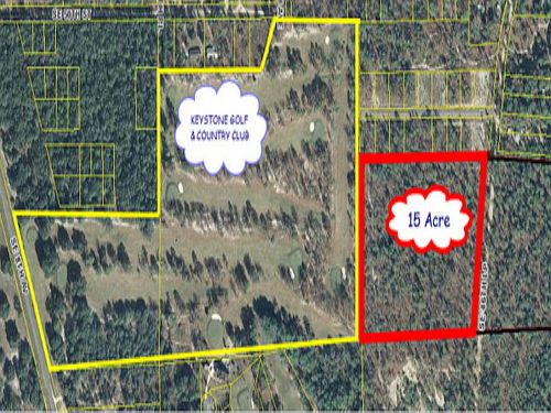 15 Acres In Bradford (a-362) : Keystone Heights : Bradford County : Florida