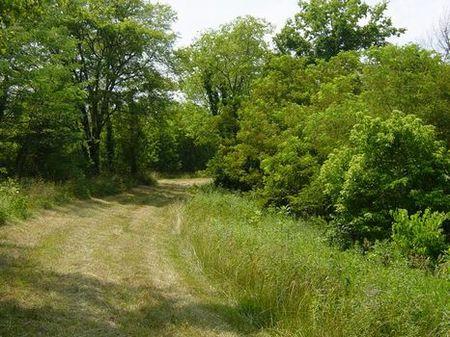70 Acres, Nora Road, Tract 5 : Carrollton : Carroll County : Kentucky