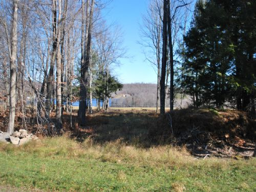 Lot 4, The Paddocks At Duck Harbor : Equinunk : Wayne County : Pennsylvania
