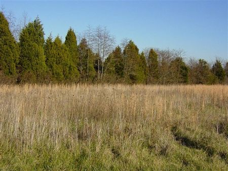 22.2 Acres, Richmond Road : Milton : Trimble County : Kentucky
