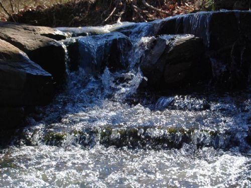 35 Acres With Creek : Mountain View : Stone County : Arkansas