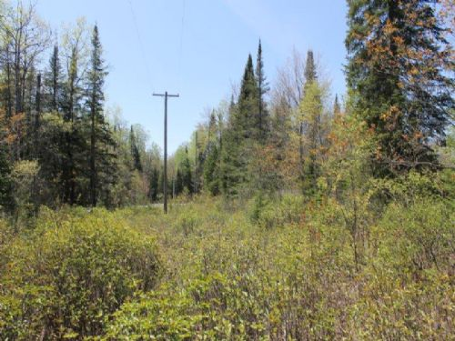 Hunting Land In The Adirondacks : Forestport : Oneida County : New York