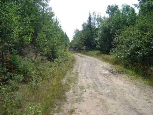 16.94 Ac Prime Hunting Land : Minocqua : Oneida County : Wisconsin