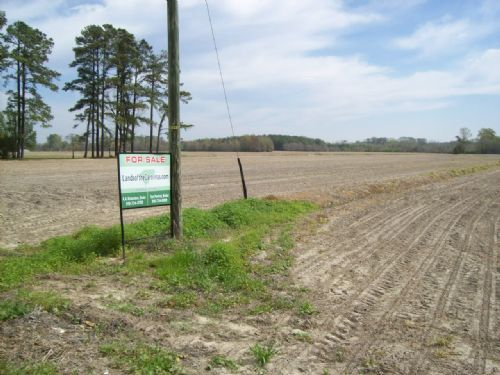 78 Acre Farm On Hwy. 41 : Fairmont : Robeson County : North Carolina