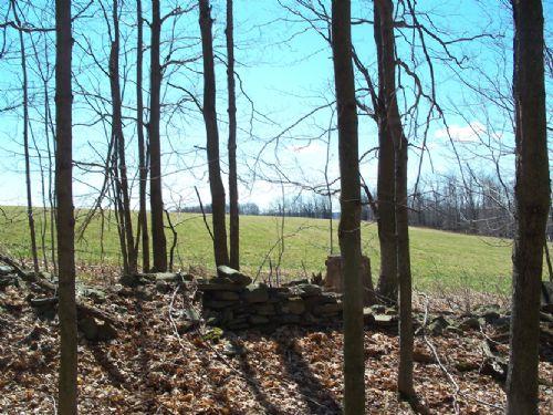 15 Acres Wooded Land Hunting : Pharsalia : Chenango County : New York