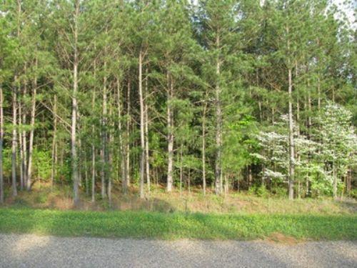 4.16 Acres On Co Rd 1 Wedowee : Wedowee : Randolph County : Alabama