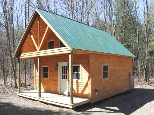 Land & Cabin Salmon River Country : Albion : Oswego County : New York