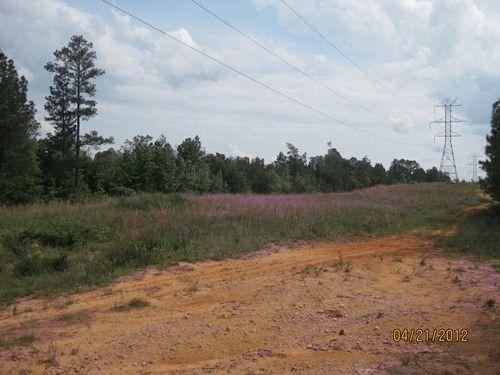 Hunting-recreational Tract : Blair : Fairfield County : South Carolina