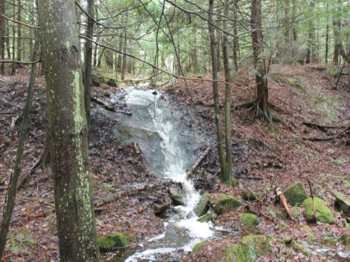 176 Acres Hunting Land Adirondacks : Croghan : Lewis County : New York