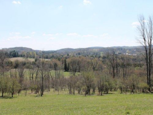 10 Acres Country Homesite Views : Columbia : Herkimer County : New York