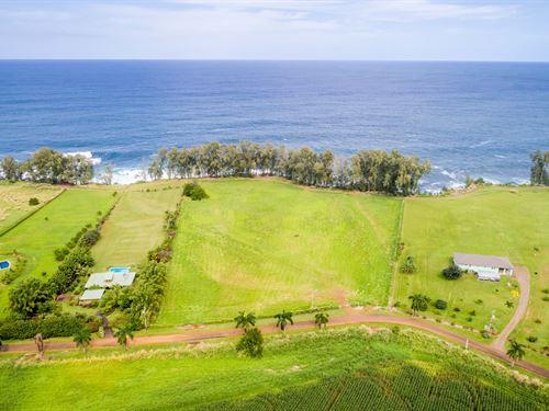 Ocean Front $650,000 : Hilo : Hawaii County : Hawaii