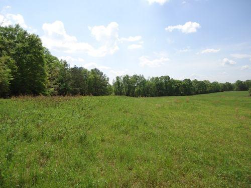 46 +/- Acres, Coffee County : Zion Chapel : Coffee County : Alabama