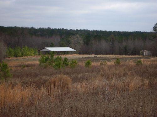 72 +/- Acres In Troy, Al : Troy : Pike County : Alabama