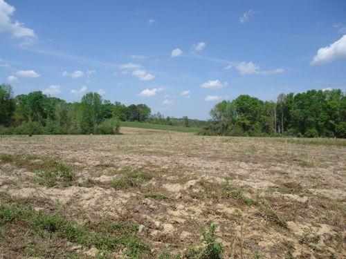 13.5 +/- Acres In Jack, Al : Jack : Coffee County : Alabama