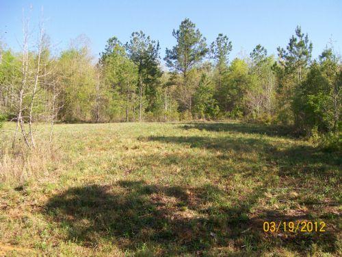 18.01 +/- Acres In Goshen, Al : Goshen : Pike County : Alabama