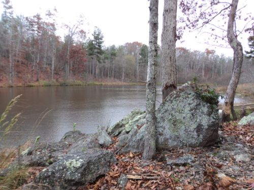 Land, Lake, And Cabins : Lineville : Randolph County : Alabama