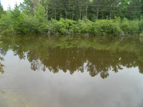 14 Acres With Pond And Pasture : Lexington : Oglethorpe County : Georgia