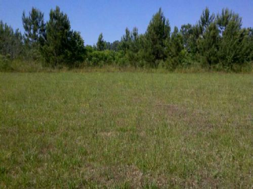 5.5 Acres Of Pasture And Woods : Union Point : Oglethorpe County : Georgia