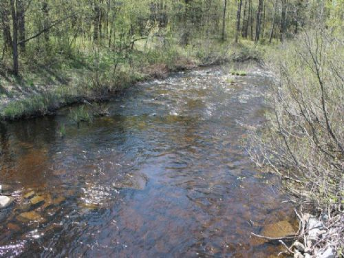 57 Acres Borders Forest And Stream : Montague : Lewis County : New York