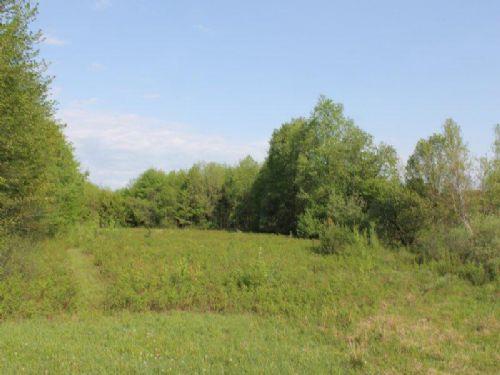 46 Acres Near Salmon River : Williamstown : Oswego County : New York