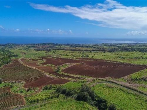 213 Acres Ocean Views : Paukaa : Hawaii County : Hawaii
