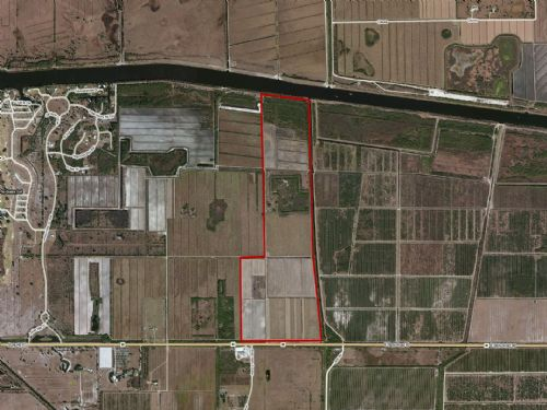 255 Acre Sugar Cane : Moore Haven : Hendry County : Florida