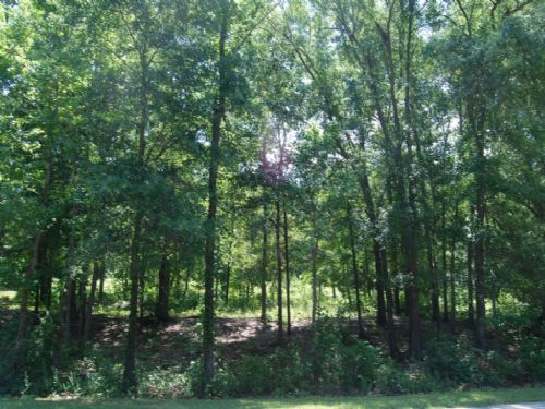 4 Lots In Great Location : Spartanburg : South Carolina