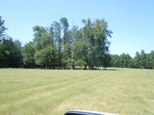 Cates Mead Farm : Waynesboro : Burke County : Georgia