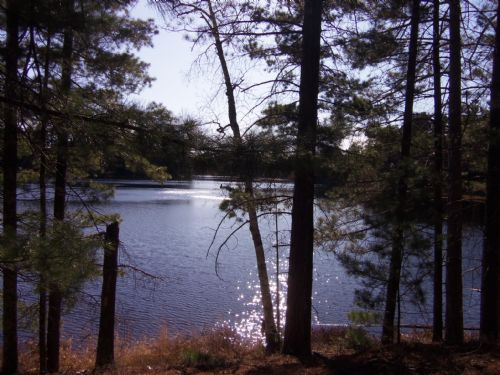 Lots On Lake Nokomis Shores : Mercer : Iron County : Wisconsin