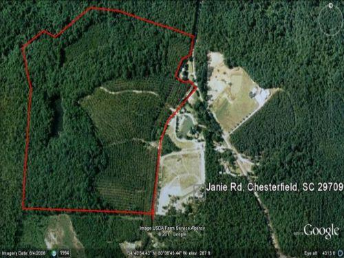 Janie Road, Chesterfield Co : Chesterfield : South Carolina