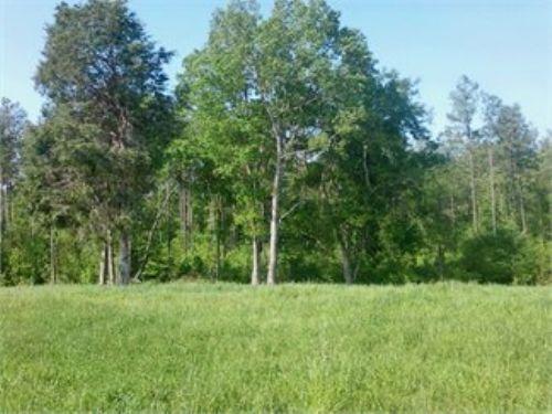 Beautiful 13 Acres Farm : Camden : Kershaw County : South Carolina