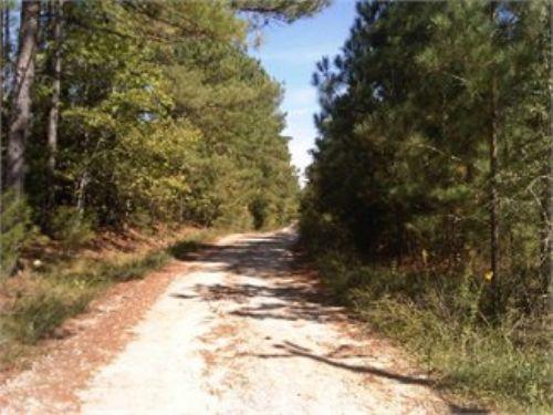 Beautiful 7+/- Acres In Chapin, Sc : Chapin : Lexington County : South Carolina