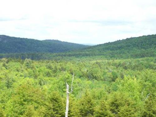 Mountain View Dedham : Dedham : Hancock County : Maine