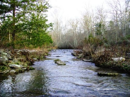 971 Acres Of Hunting / Timber Land : Clinton : Van Buren County : Arkansas