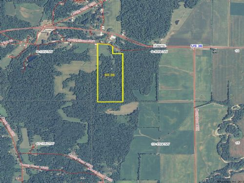 +/- 60 Acres : Rockville : Parke County : Indiana