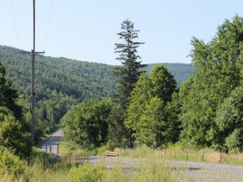 78 Acres Borders State Forest : Broome : Schoharie County : New York